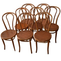 Bentwood Dining Chairs 'Set of Eight' of Solid Oak with Plywood Seats from 1947