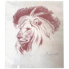 Paul Jouve Period Original French Drawing Most of Lion by Raylambert ,1940
