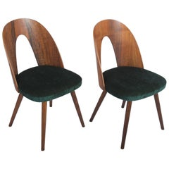 Mid Century Walnut Dining Chairs by Antonin Suman for Tatra