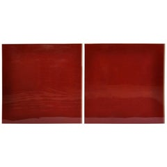 Contemporary Red Lacquered Wall Art