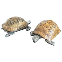 1970s Turtel Shell Boxes Signed by Gabriella Crespi