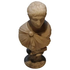 19th Century Grand Tour Souvenir Bust