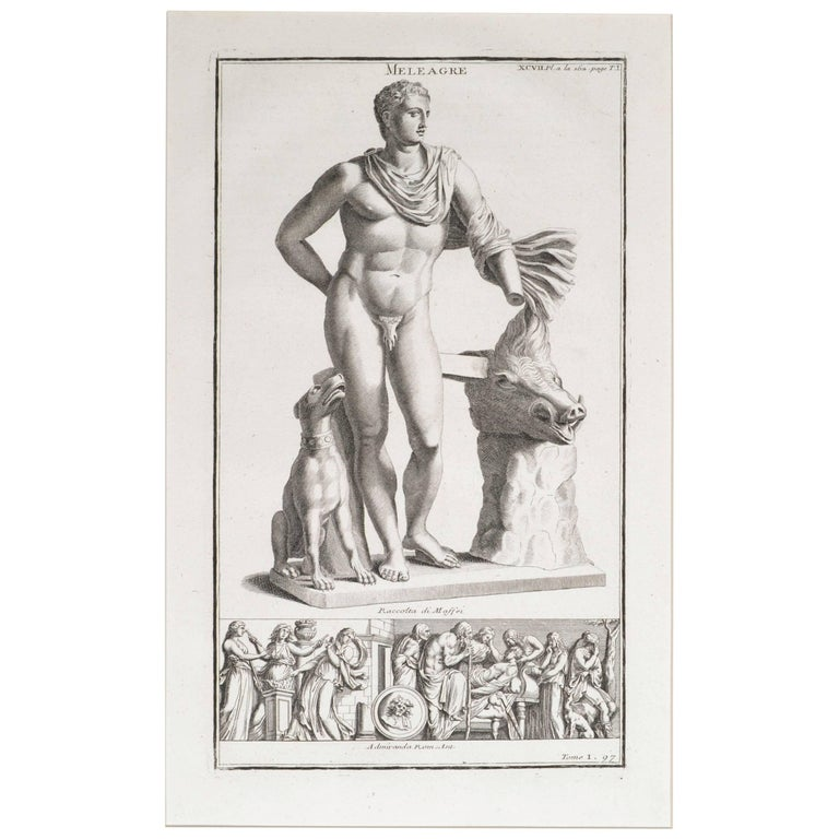 Meleager a Copperplate Engraving For Sale