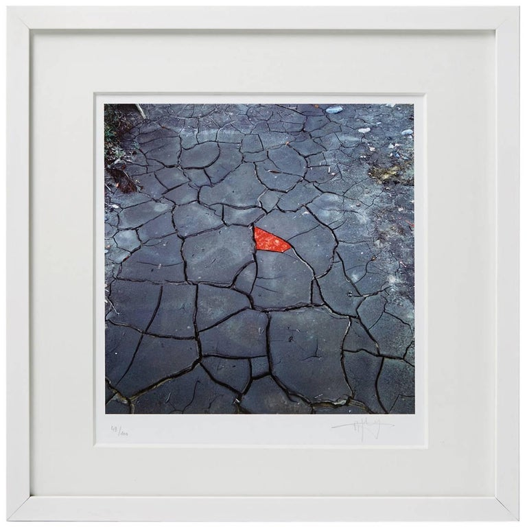 Lithograph by Andy Goldsworthy, England