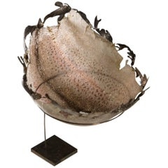 Suspended Together, Fish Leather Bowl with Silver Fish Crown, on Stand