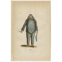 Antique Print of an Eskimo by H. Berghaus, 1855