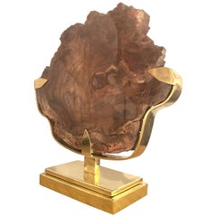 Willy Daro Petrified Wood Mounted Sculpture