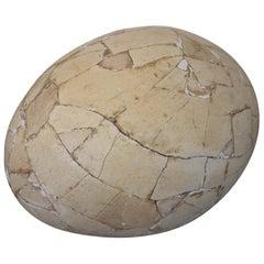 Restored Aepyornis Egg, Very Rare