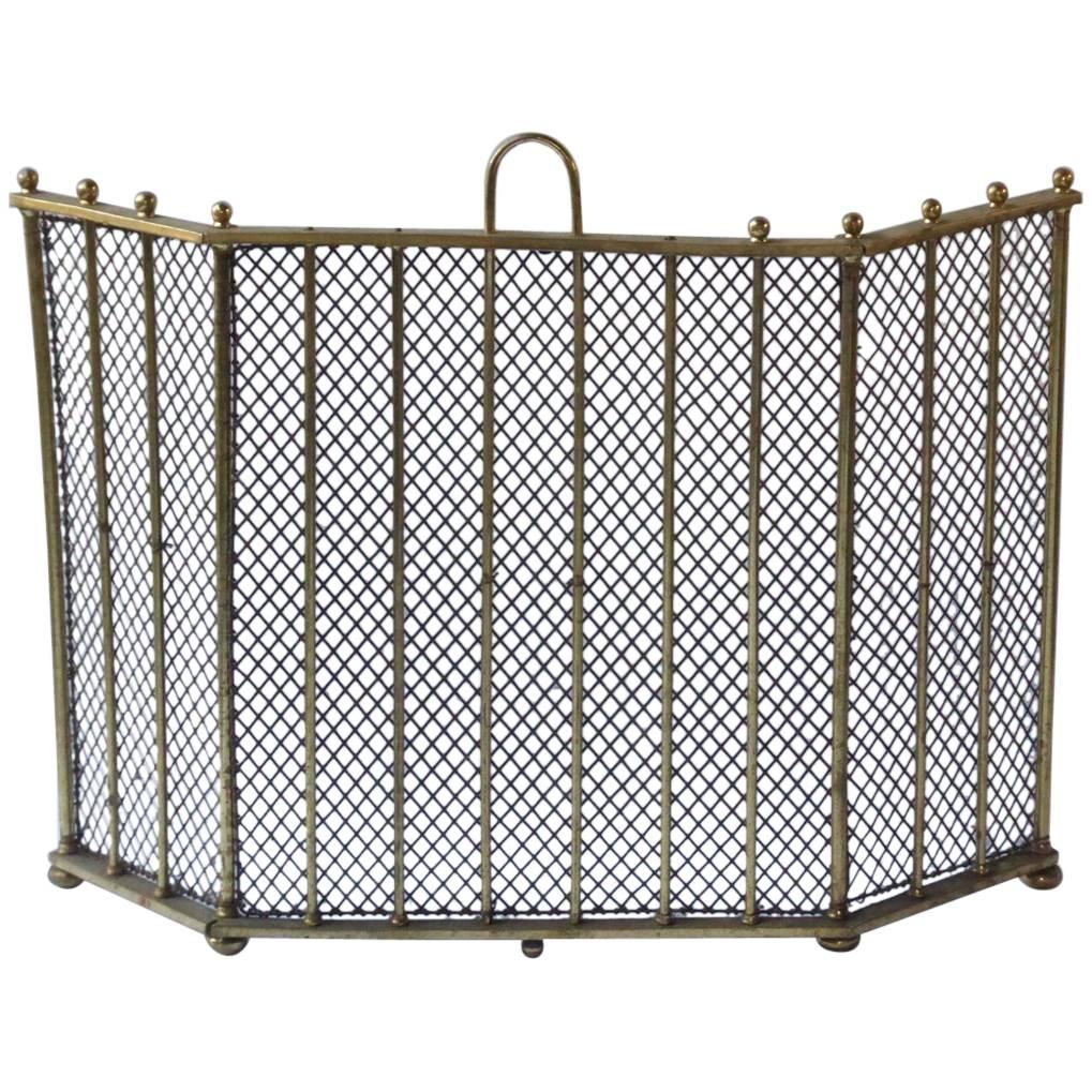English Victorian Style Fireplace Screen or Fire Screen