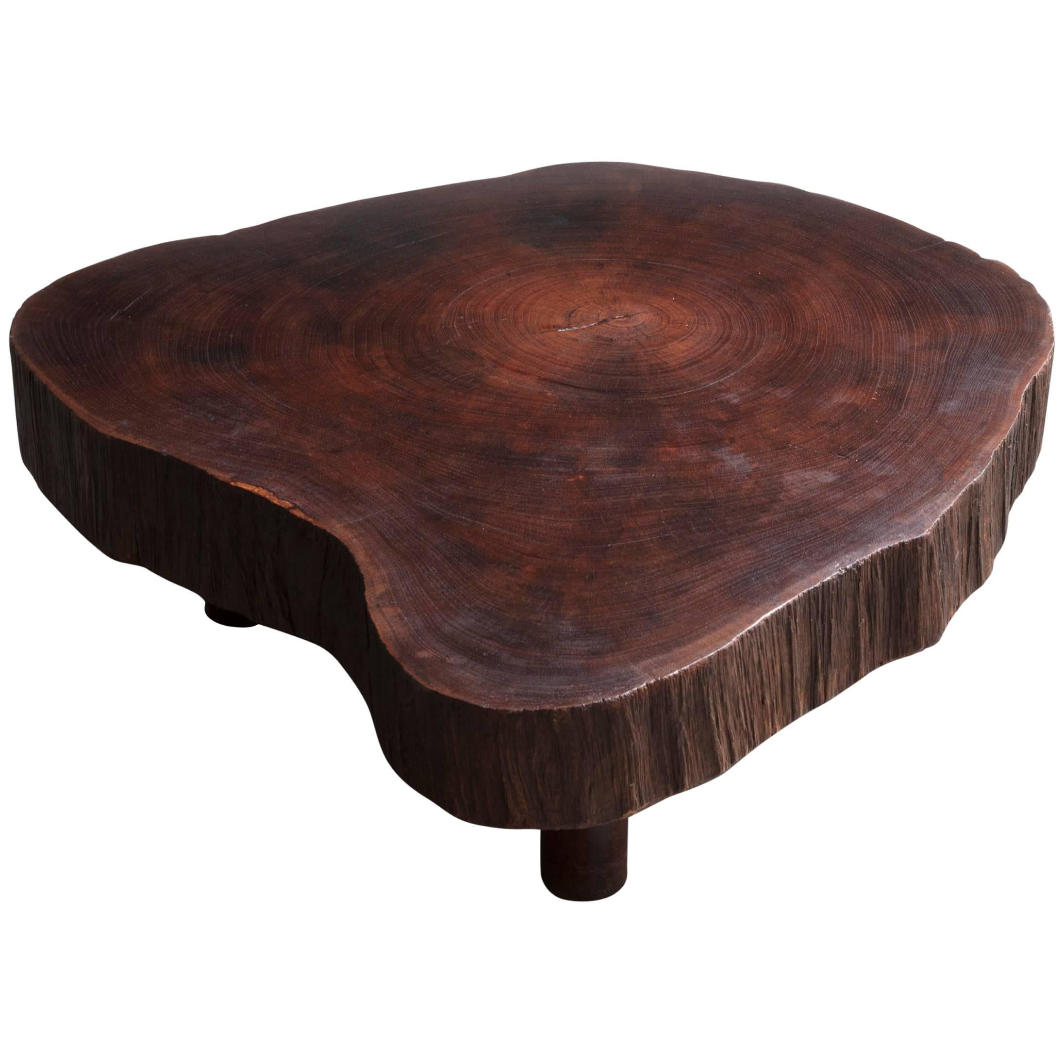 Solid Tree Trunk Coffee Table Made of a Thick Cross Section of