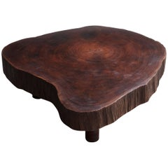 Solid Tree Trunk Coffee Table Made of a Thick Cross Section of Vinhatico Wood