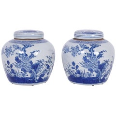 Pair of Blue and White Porcelain Ginger Jars