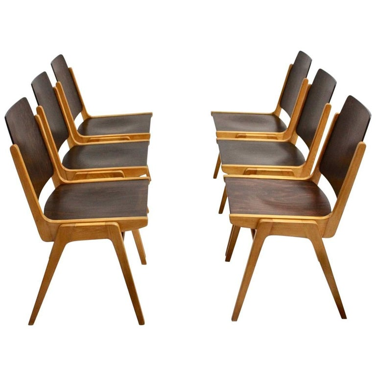 Midcentury Brown Beech Dining Room Chairs Franz Schuster Vienna 1959, Set of Six For Sale