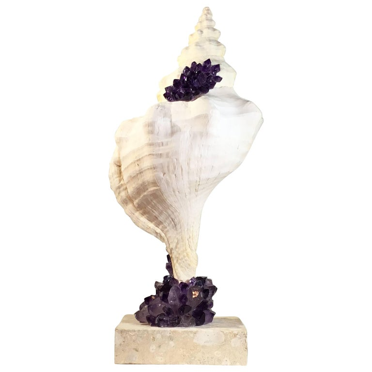 One of a Kind Sea Shell and Amethyst Crystal