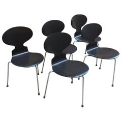 Set of Five Arne Jacobsen for Fritz Hansen 3100 Ant Chairs