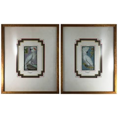 Pair of French 18th Century Martinet Bird Prints