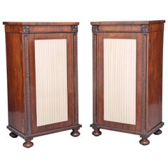Pair of Early 19th Century Rosewood Pedestal Cabinets