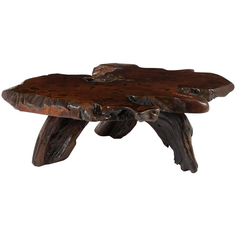 Root Coffee Table For Sale: Early 20th Century Organic Tree Root Coffee Table For Sale