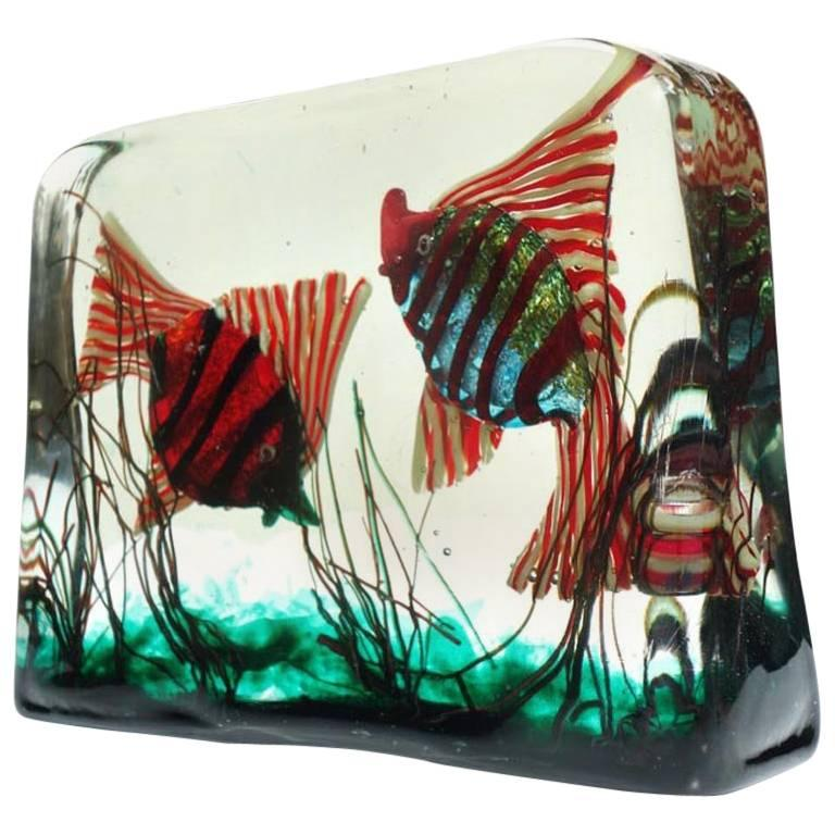 1950s by Alfredo Barbini for Cenedese Murano Glass Aquarium