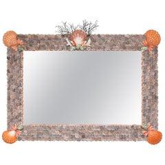 Large Horizontal Seashell Mirror
