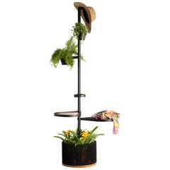 Chuva Brazilian Contemporary Outdoor Wood Shelf by Lattoog