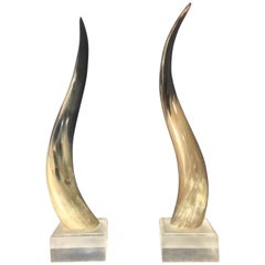 Steer Horns Mounted on Lucite Bases a Pair in the Mid Century Style