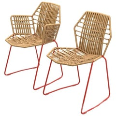 Moroso Tropicalia Dining Chair in Leather with or Without Arms