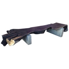 Organic and Concrete Bench