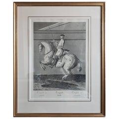 Antique Horse Print 'Croupade' by J. E. Ridinger, circa 1750