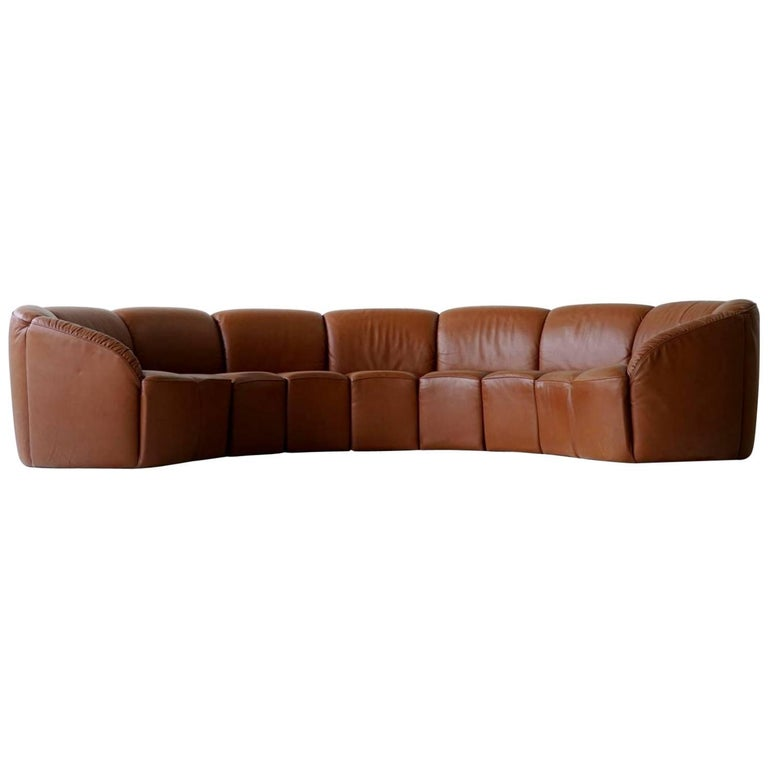 Half Round Leather Lounge Sofa by Walter Knoll, 1960s