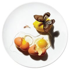 Dish Dinner Plate Series by Patella Brothers