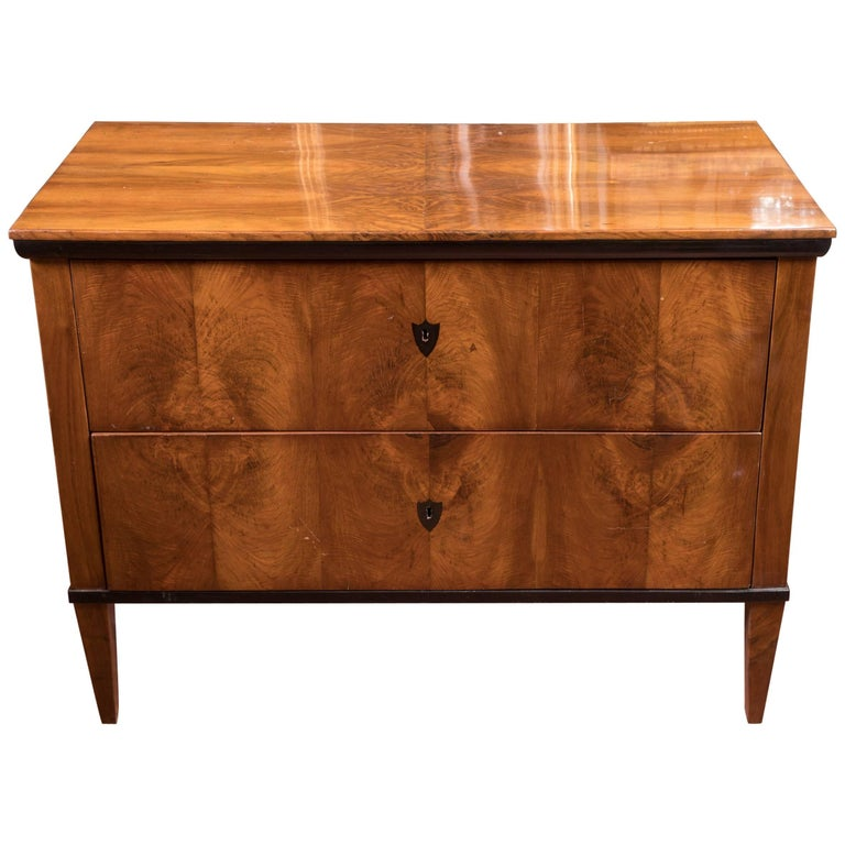 Beautiful 19th Century Biedermeier Commode For Sale