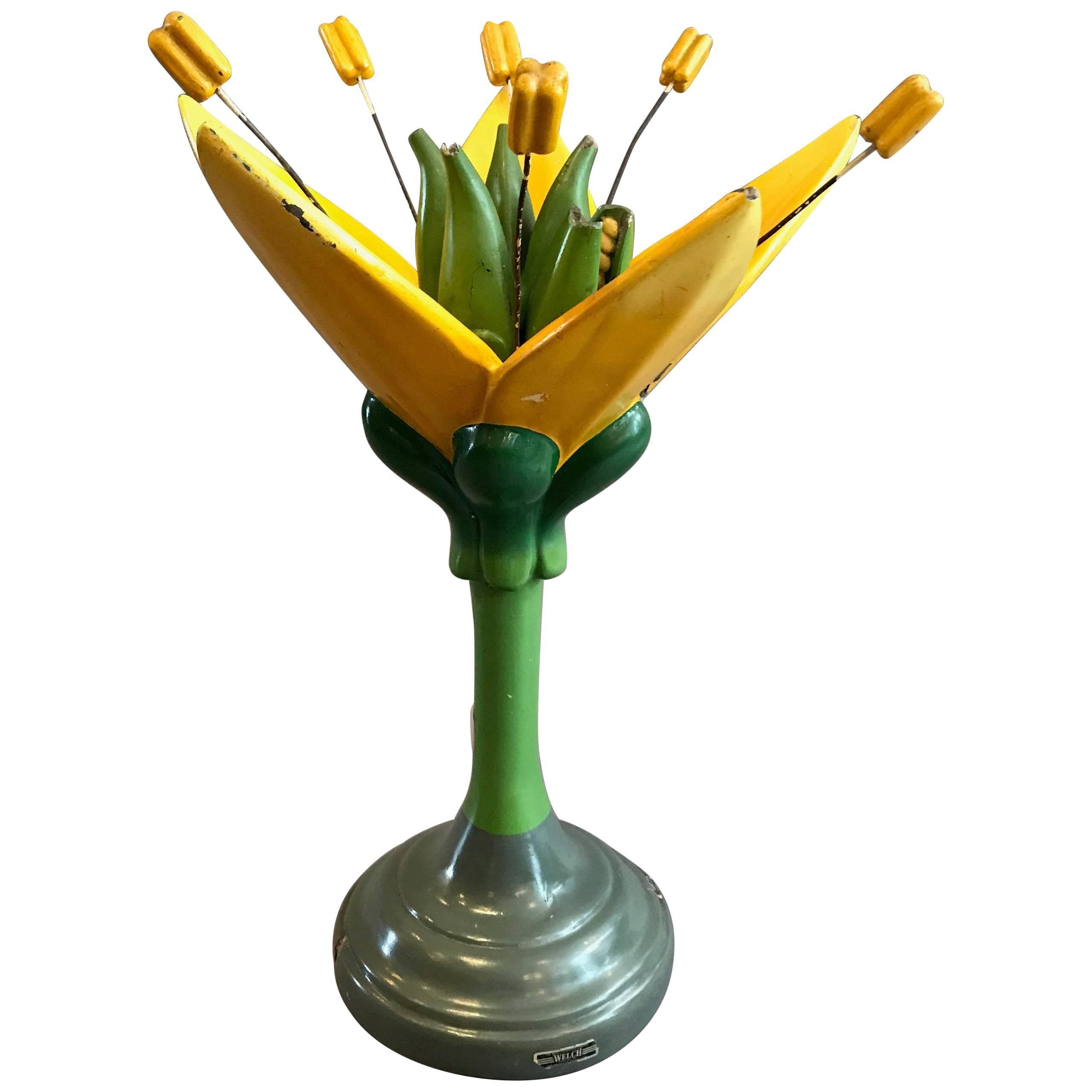 Sargent-Welch Scientific Flower Botanical Model