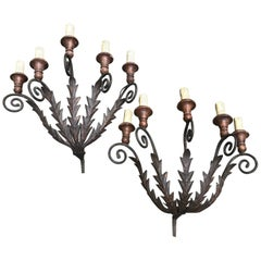 Pair of Large Italian Sconces Wrought Iron circa 1850 Five-Armed Candleholders