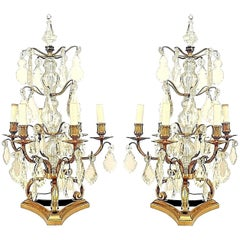 Pairs of French Louis XV Bronze Dore and Crystal Candelabras