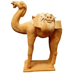 Large Superbly and Naturalistic Modeled Standing Camel, Tang Dynasty TL Tested