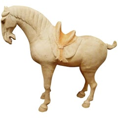 Fine Tang Dynasty Pottery Horse, TL Tested