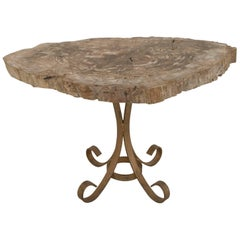 Postwar Design Low Table with a Petrified Wood Free-Form Top
