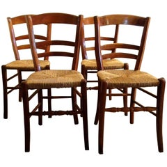 19th Century Country House Solid Cherry Chairs Set of Four