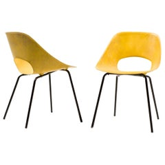 Rare Pair of Tulip Chairs in Fiberglass by Pierre Guariche for Steiner