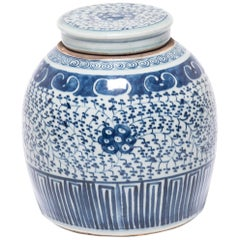 Early 20th Century Chinese Blue and White Trailing Vines Covered Jar