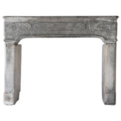 19th Century Antique Fireplace of Grey Marble Stone