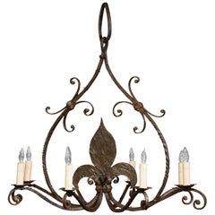 Large 19th Century French Wrought Iron Eight-Light Chandelier with Fleur-de-Lys
