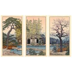 Toshi Yoshida, Landscape, Garden, Scenery, Ukiyo e, Japanese Woodblock Print