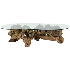Midcentury Organic Form Tree Root Coffee Table