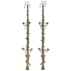 Pair of Antique French Tall Wood and Crystal Candle Sconces