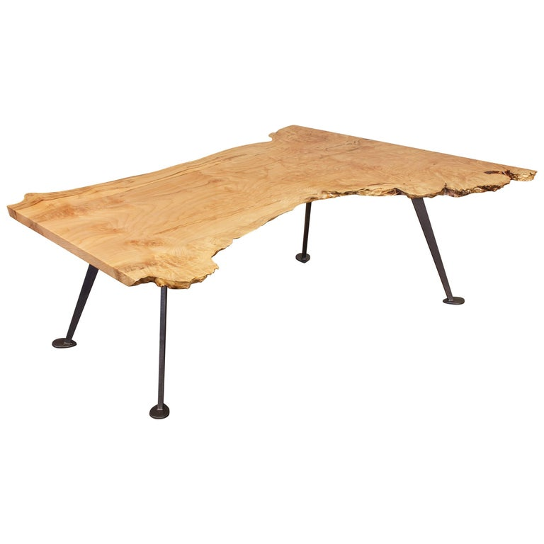 Coffee Table Free-Form Live Edge Maple Burl with Steel Legs
