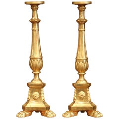 Important Pair of 19th Century Italian Carved Giltwood Cathedral Candlesticks