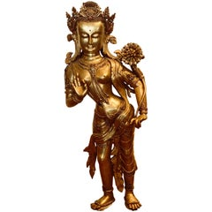Tara Meditation Deity Loving Mother Star Travel