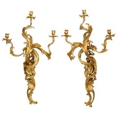 Two Similar Pairs of French Louis XV Style, 19th Century Three-Arm Wall Sconces